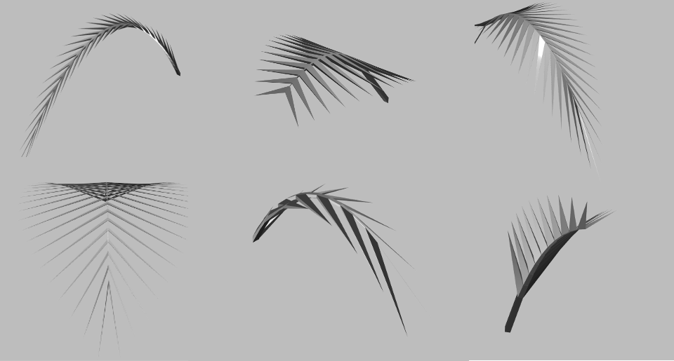 palm leaf examples